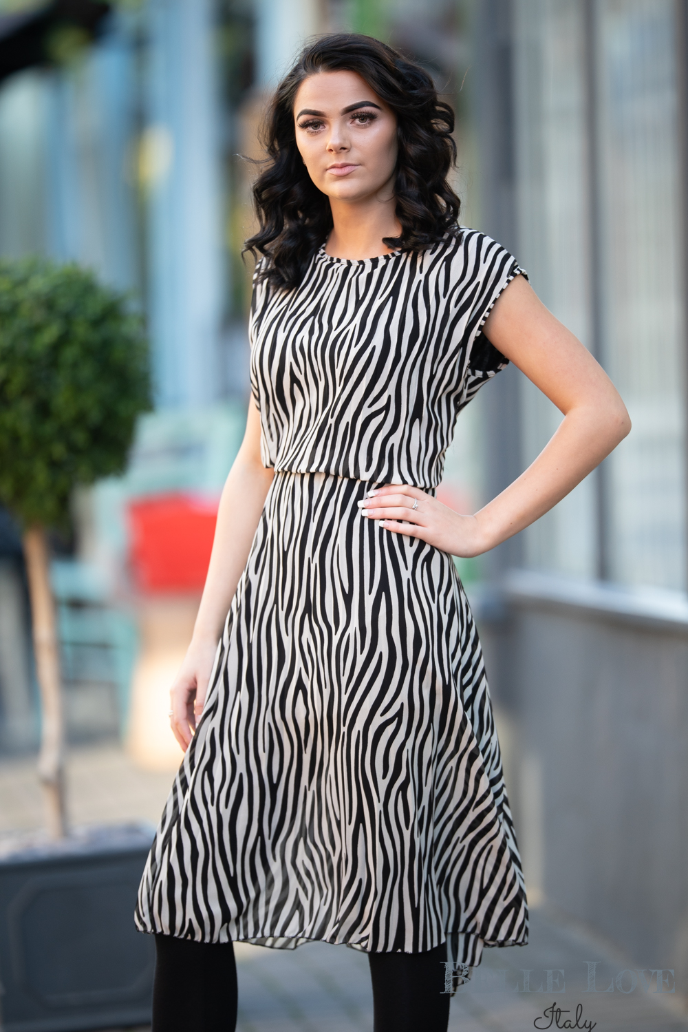 Belle Love Italy Zebra Print Dress